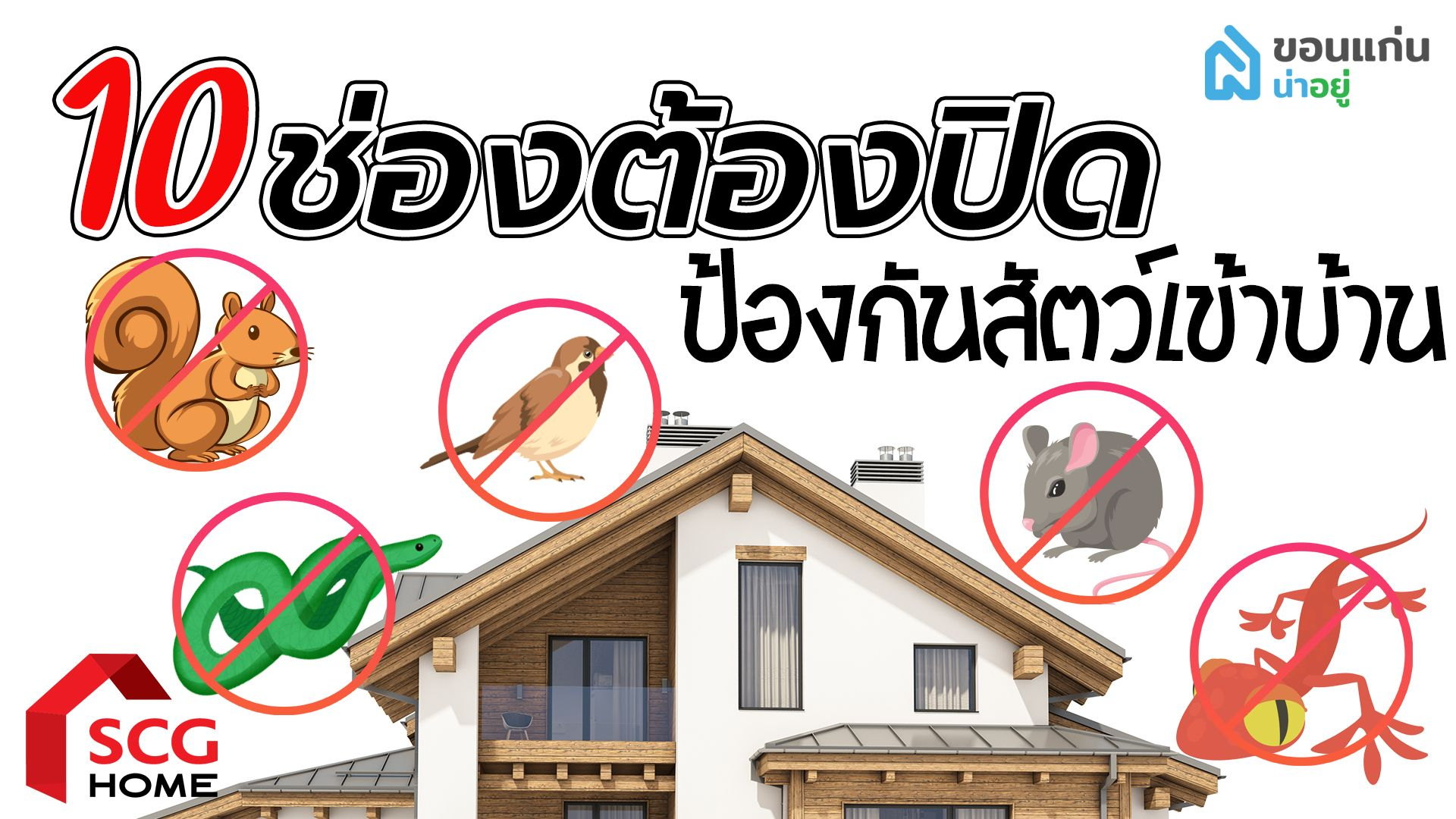 SCG Home : 10 ช่องต้องปิด! ต่อเติมตรงไหนบ้างเพื่อป้องกันสัตว์เข้าบ้าน